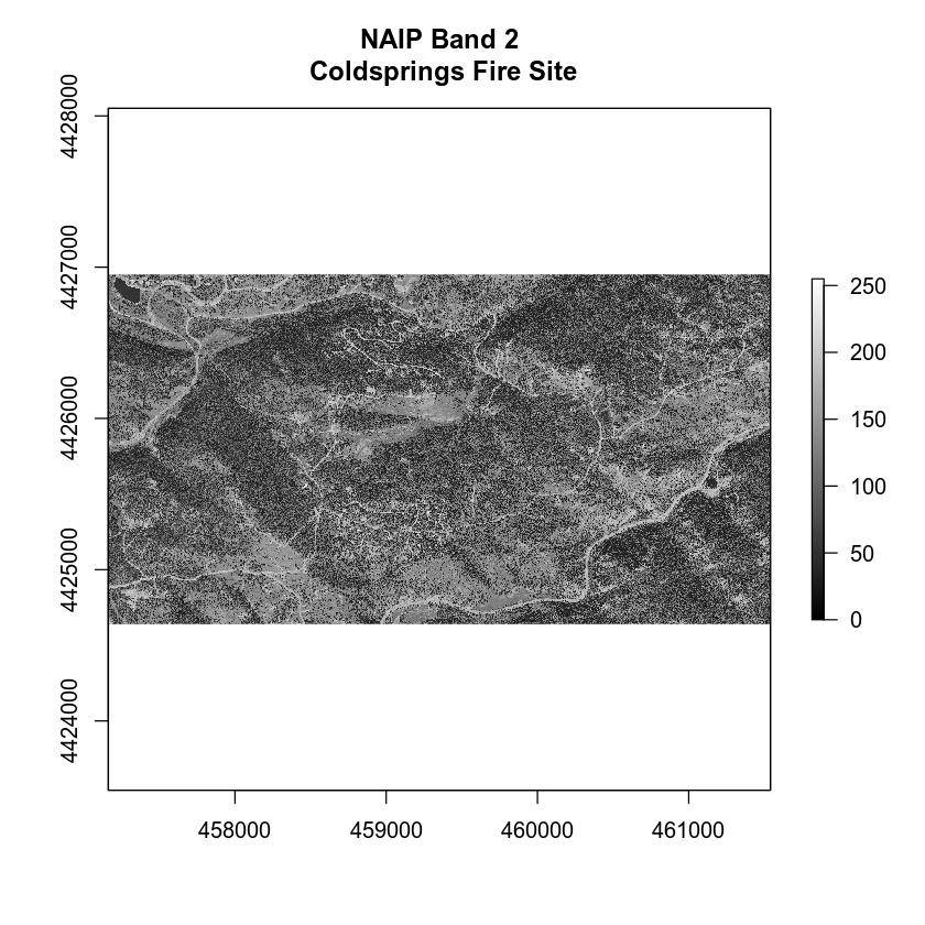Plot individual NAIP band - band 2.