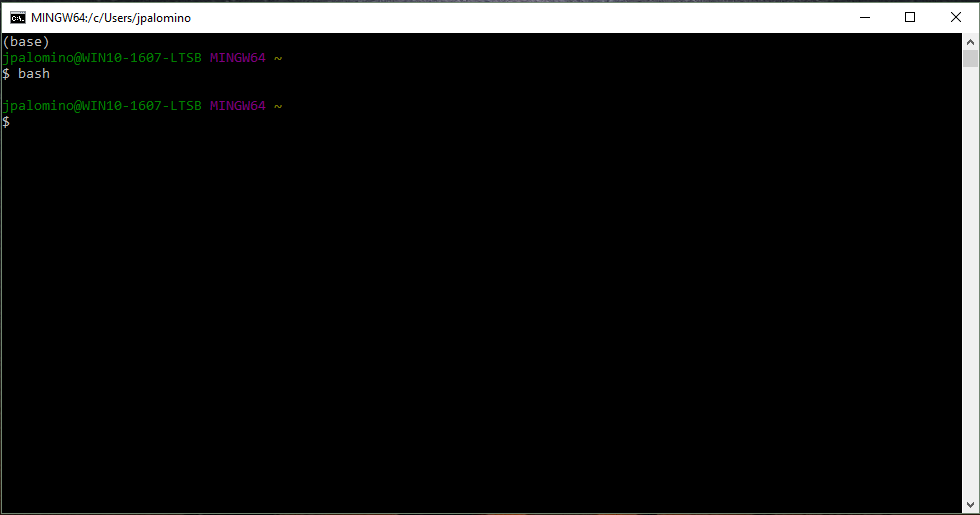 This is what the Git Bash Terminal on Windows looks like.