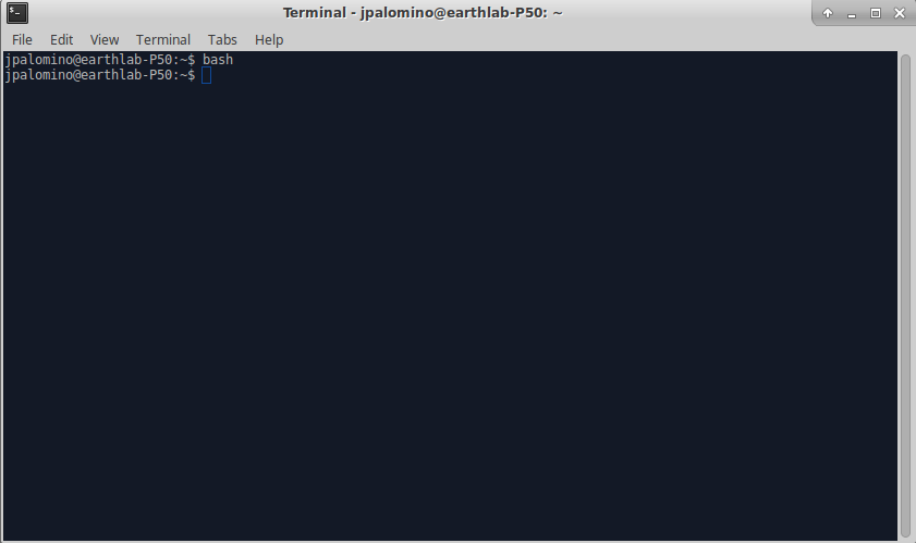 This is what the Terminal on Linux looks like.