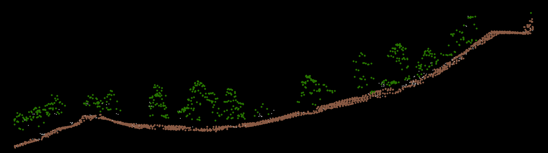 A cross section of 3-dimensional lidar data. Brown points represent ground, green represent vegetation (trees).