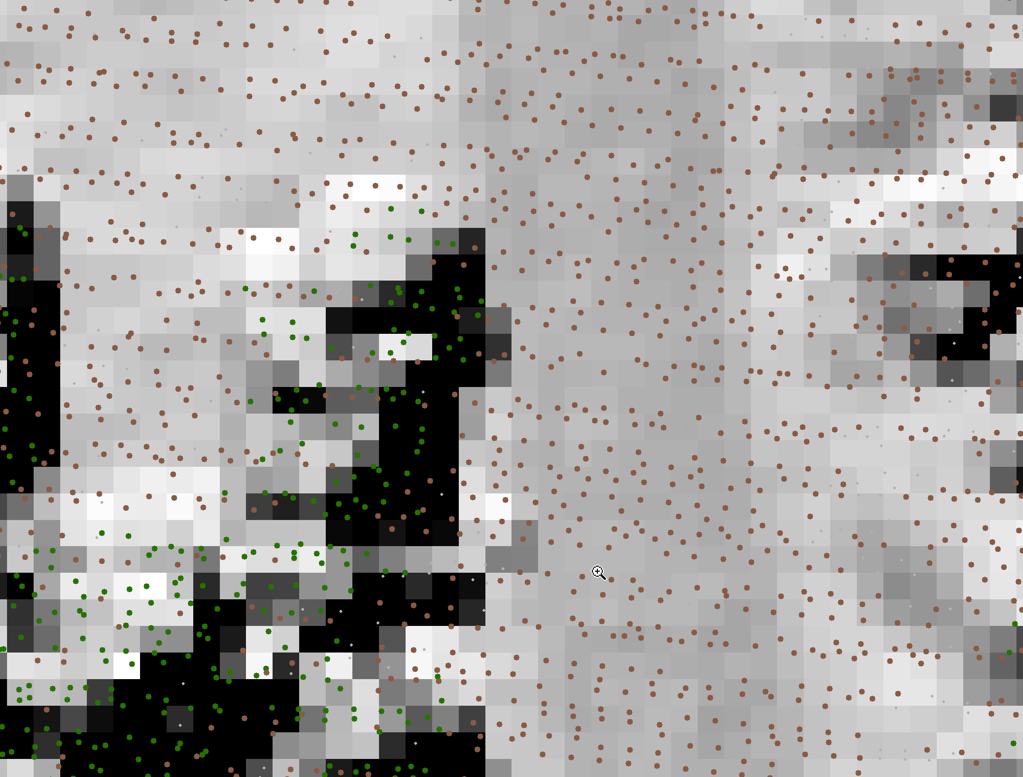 How lidar point clouds are converted to raster data formats