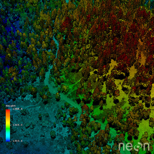 Lidar data collected by NEON AOP