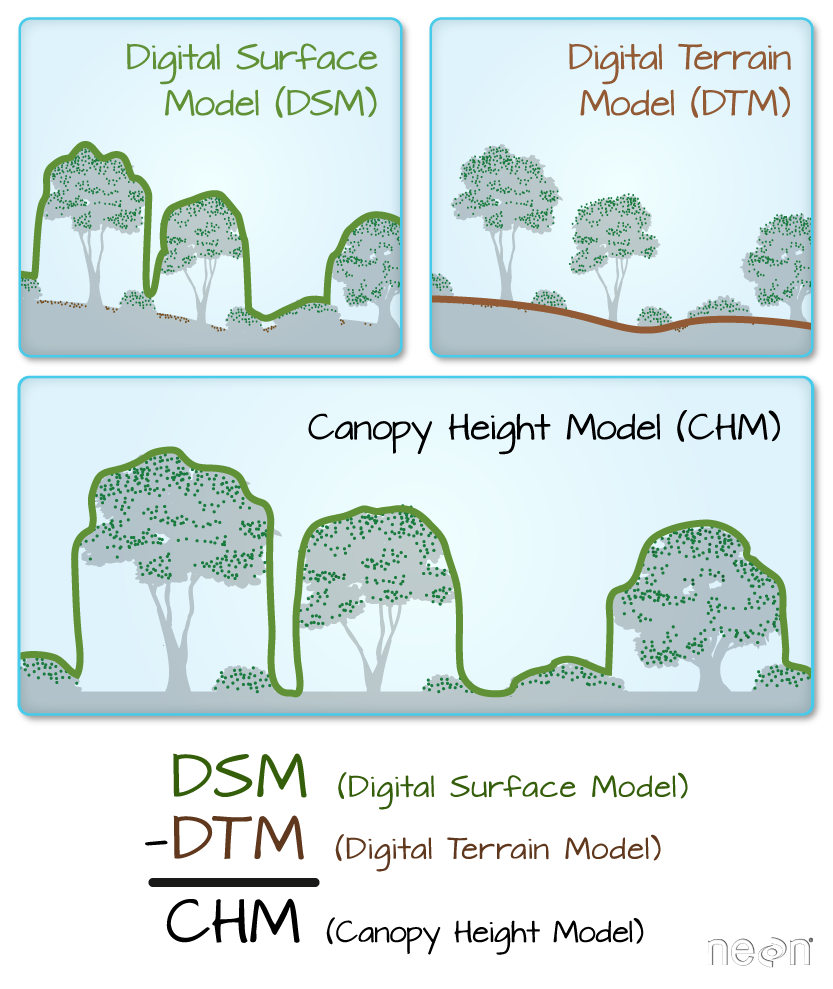 Lidar derived DSM, DTM and CHM.