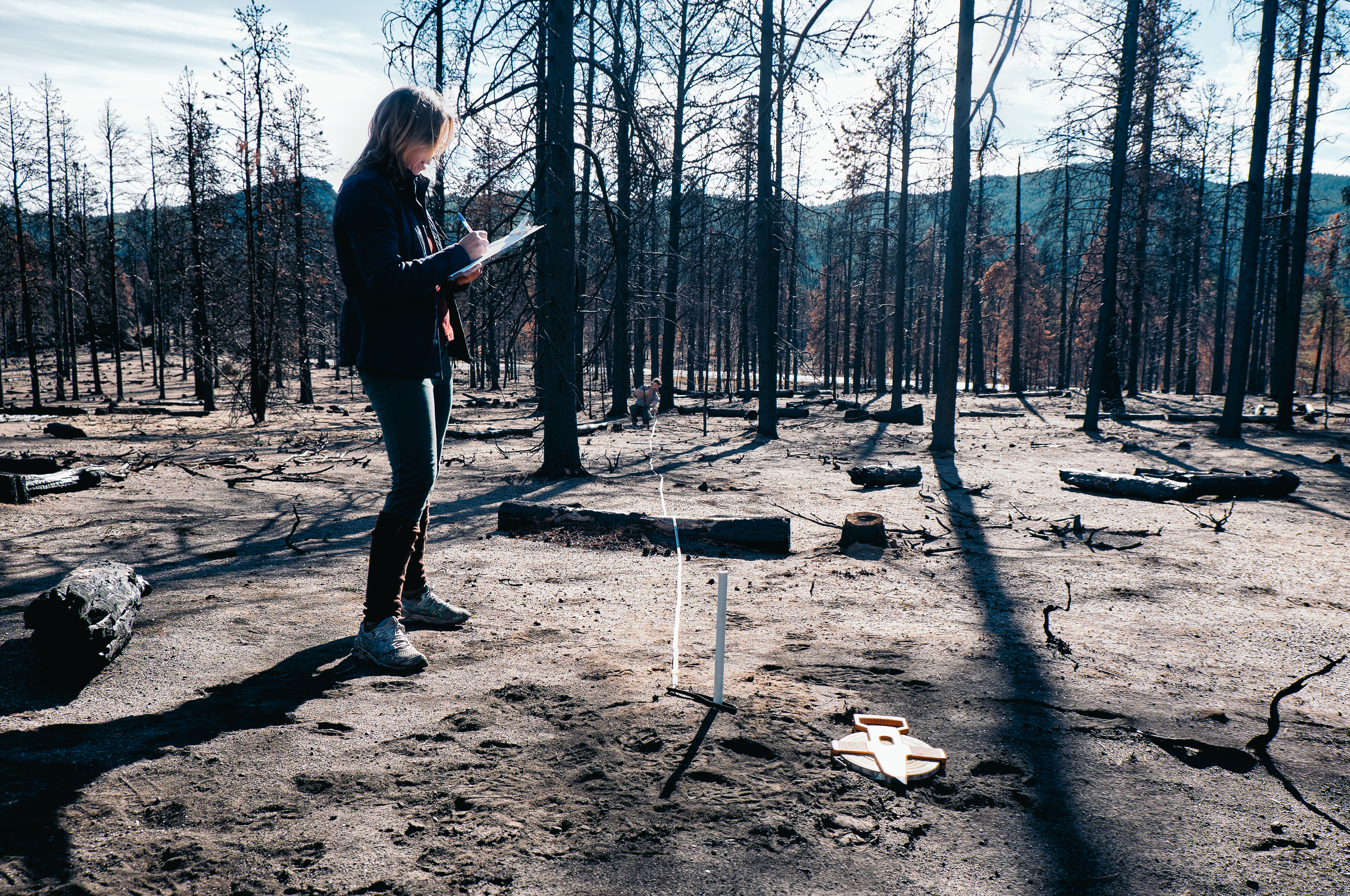 A CU Boulder student performs fieldwork at the site of the Cold Springs Fire.