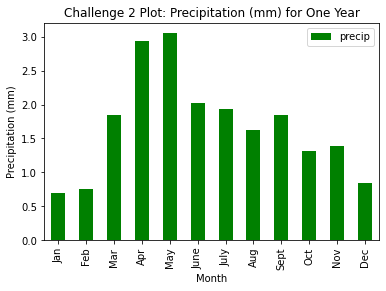 Bar plot of precipitation (mm) for one year.