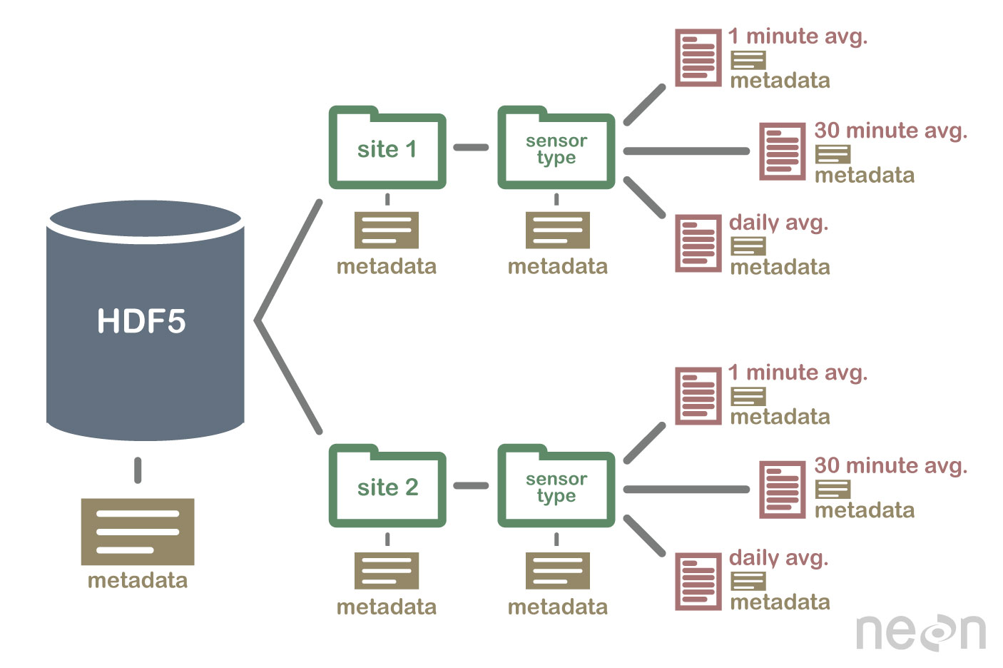 An example HDF5 file structure containing metadata for the file, groups, and datasets.