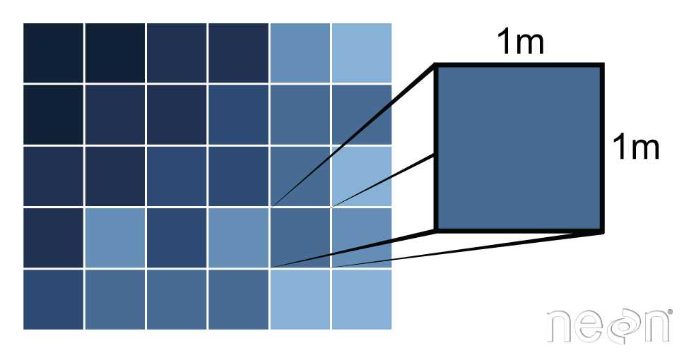 Detail of a 1 meter pixel.