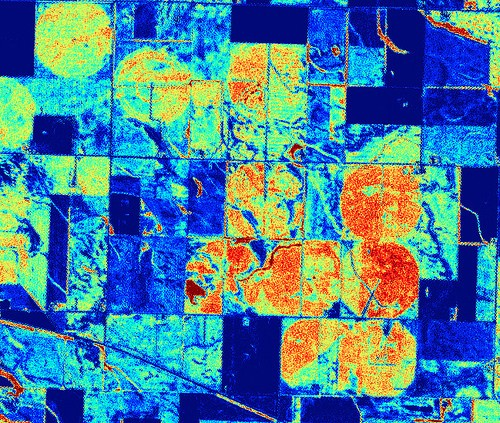 Remote sensing NDVI example image of an agricultural field.