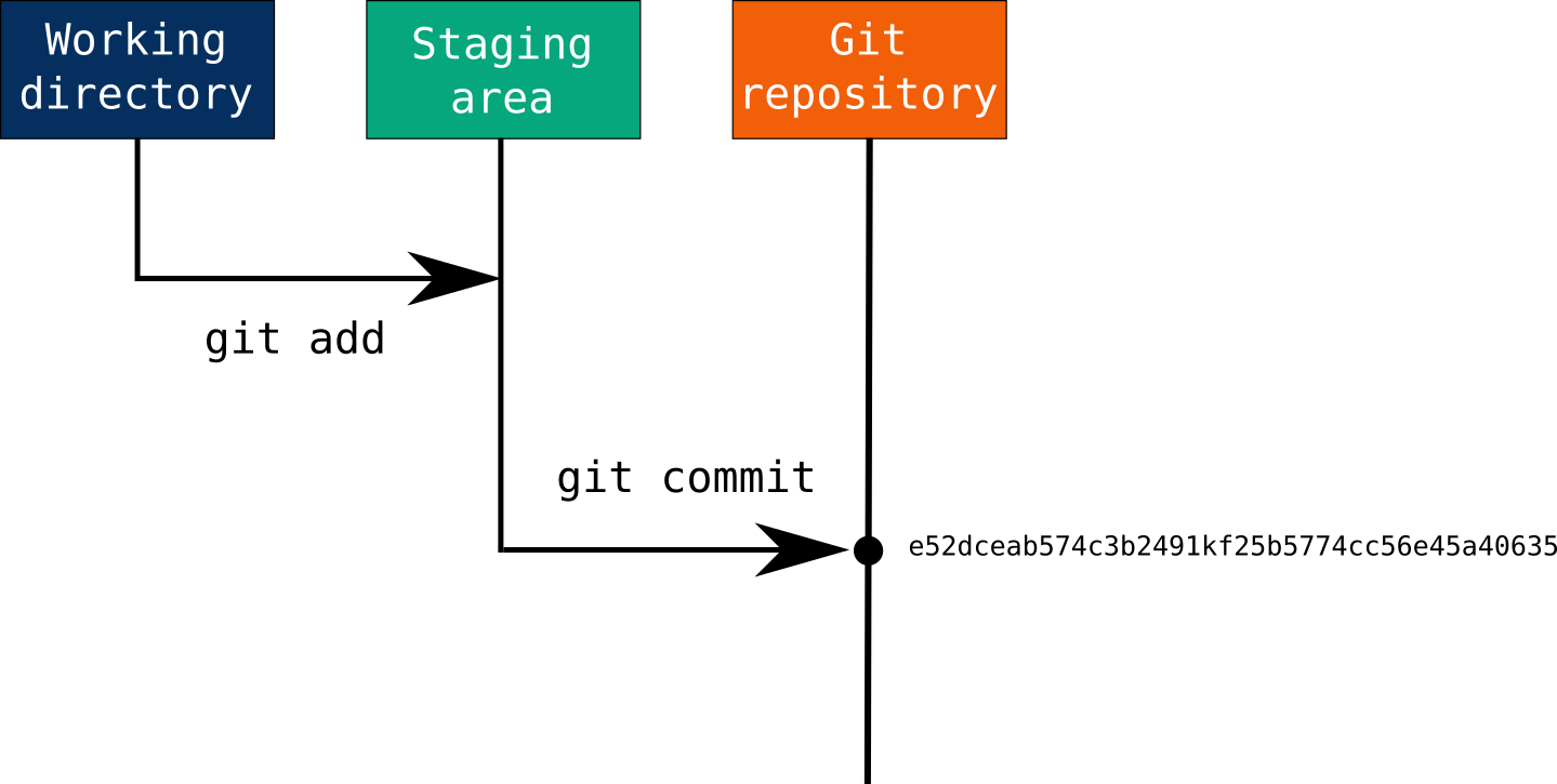 Modified files are staged using git add, and following a commit, all files in the staging area are snapshotted and become part of the repository's history, receiving a unique SHA-1 hash identifier. Source: Max Joseph, adapted from Pro Git by Chacon and Straub (2014).